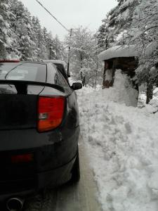 Nieve-arcen